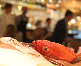 koka fisk