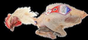 Fågel - Bressekyckling