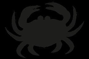Skaldjur