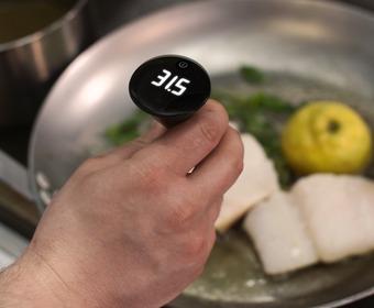 Fisk temperatur klar färdig termometer
