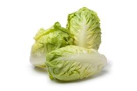 Sallad och gröna blad - Hjärtsallad
