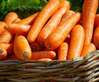 skördefest grönsaker
