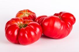 Tomat - Salladstomater