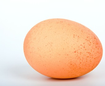 ägg och vin