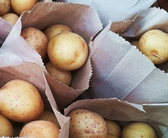 Förvara potatis PS