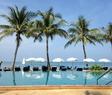 Pool och palmer