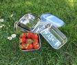 Skålar för picknick PS mise en place